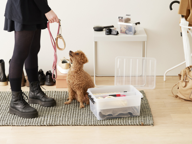 How to Keep Your House Clean and Stylish with Pets